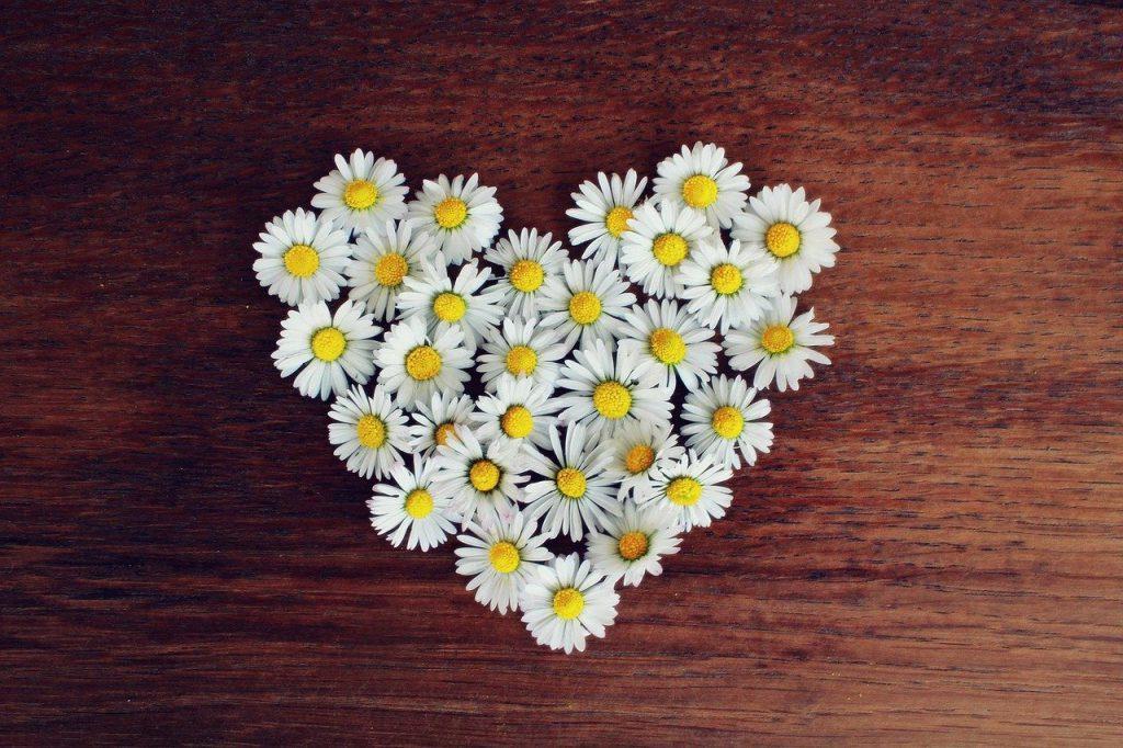 זר פרחים לבנים