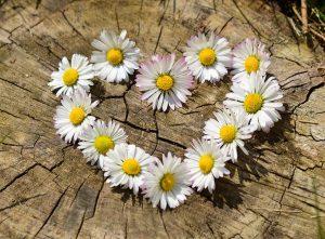 תמונה של זר פרחים בצורת לב